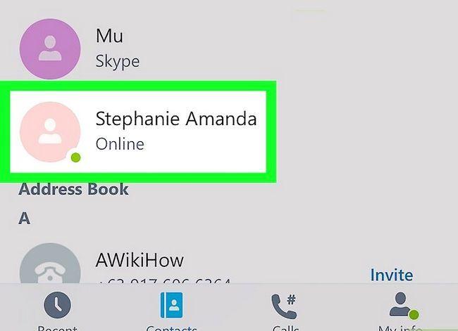 Prent getiteld Pas die volume op Skype op iPhone of iPad aan. Stap 3