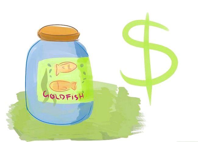 Prent met die titel Feed Goldfish Step 2