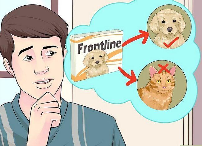 Prent getiteld Dien Frontline Step 10 toe