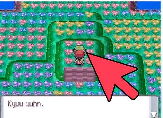 Prent getiteld Vang Shaymin op Pokemon Diamond of Pearl Step 11