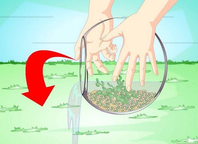 Prent getiteld Verander die water in `n Visbak Stap 6