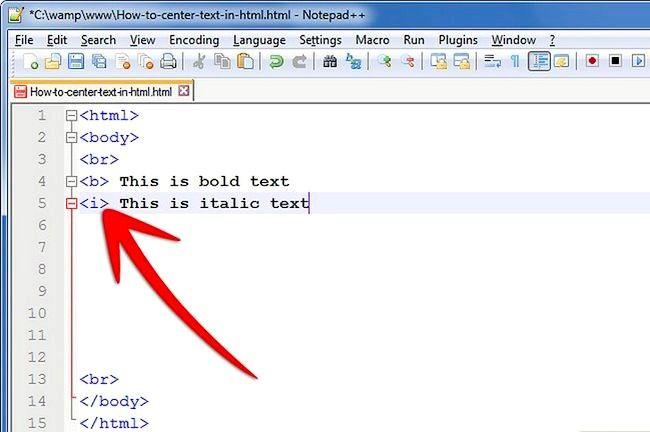 Prent getiteld Sentrum teks in HTML Stap 1Bullet1