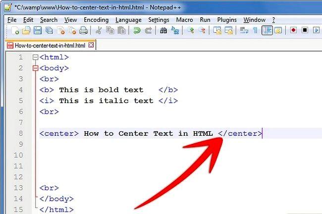 Prent getiteld Sentrum teks in HTML Stap 4