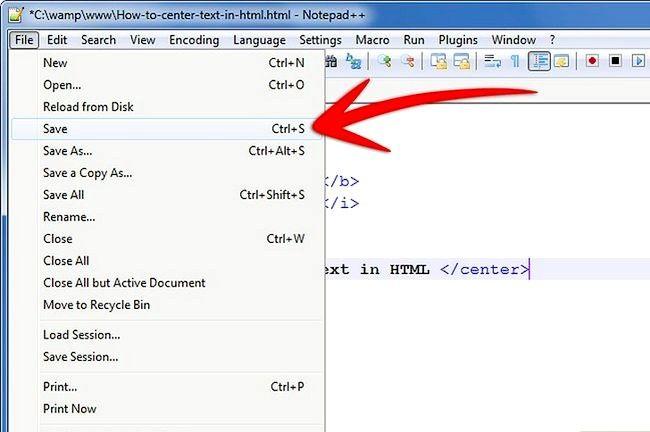 Prent getiteld Sentrum teks in HTML Stap 5