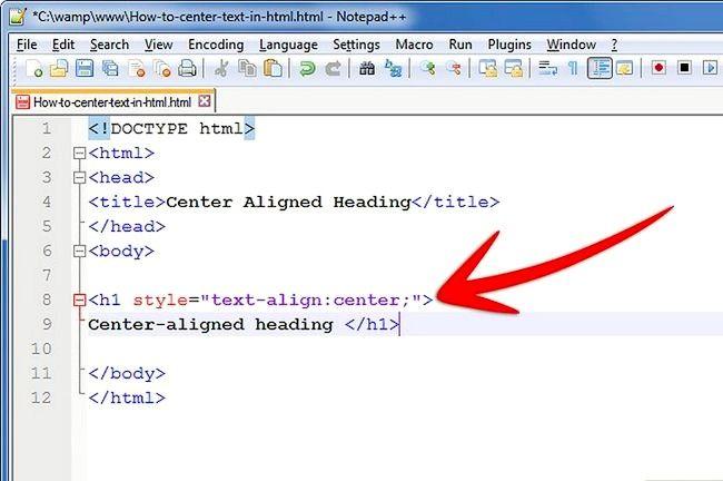 Prent getiteld Sentrum teks in HTML Stap 5Bullet1
