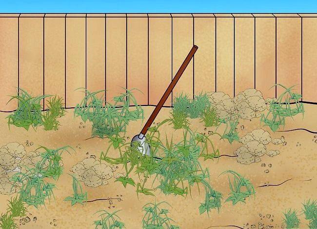 Prent getiteld Lê `n Turf Lawn Stap 1Bullet1