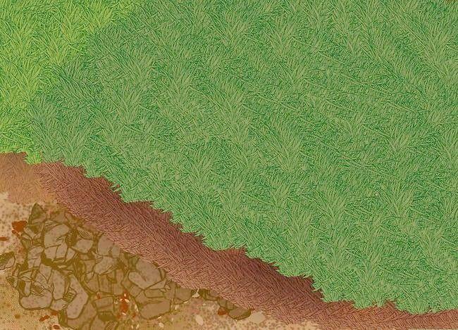 Prent getiteld Lê `n Turf Lawn Stap 4