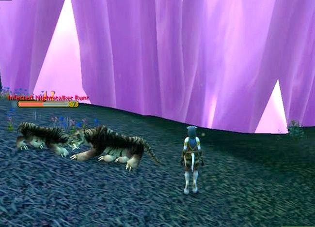 Prent getiteld Kry `n troeteldier in World of Warcraft Stap 12