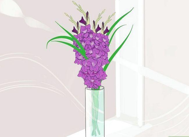 Prent getiteld Sny Gladiolus Stap 3