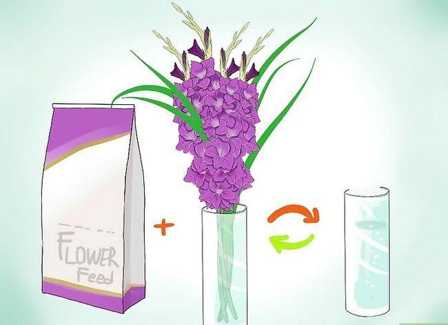 Prent getiteld Sny Gladiolus Stap 4