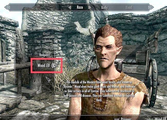 Prent getiteld Maak die regte karakter vir u in Skyrim Stap 7