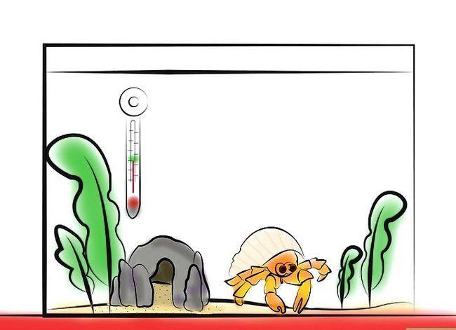Prent getiteld Stel `n Crabitat Stap 9 op