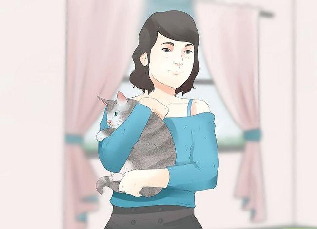 Prent getiteld Katte hê sonder om `n katdame te wees. Stap 10