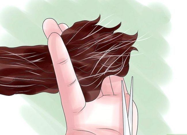 Prent getiteld Sorg vir Chemies en Hitte beskadig African American Hair Stap 6