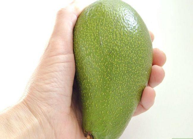 Prent getiteld Kweek `n Avokado As `n Klantlap Stap 1