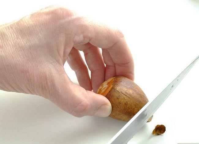 Prent getiteld Kweek `n Avokado As `n Huisplant Stap 5
