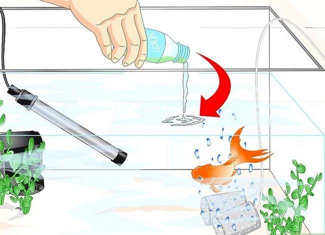 Beeld getiteld Cure Goldfish Ich Stap 11