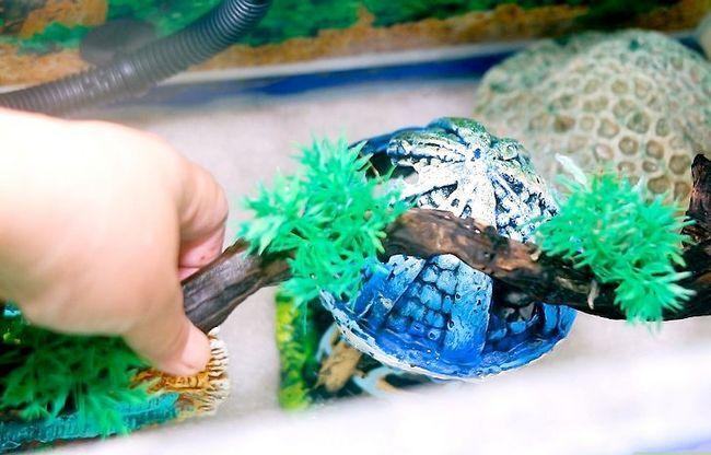 Prent getiteld Versier `n Aquarium Stap 7