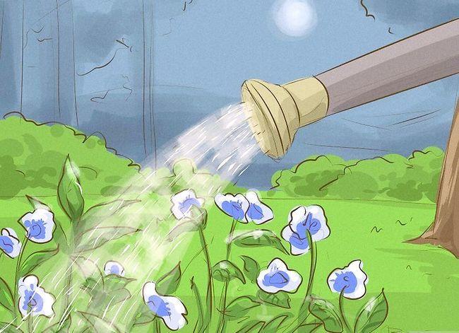 Prent getiteld Ontsnap van Garden Slugs Stap 12