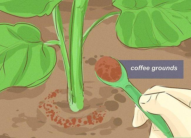 Prent getiteld Ontsnap van Garden Slugs Stap 20