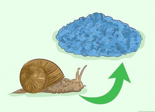 Prent getiteld Getroud van Garden Snails Stap 21