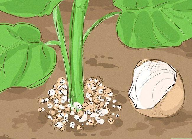 Prent getiteld Ontsnap van Garden Slugs Stap 3