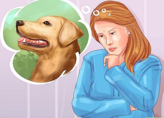 Prent getiteld Diagnose Vitiligo in Honde Stap 8