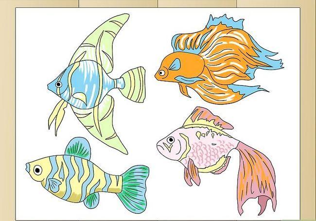 Prent getiteld Teken Tropical Fishes Final