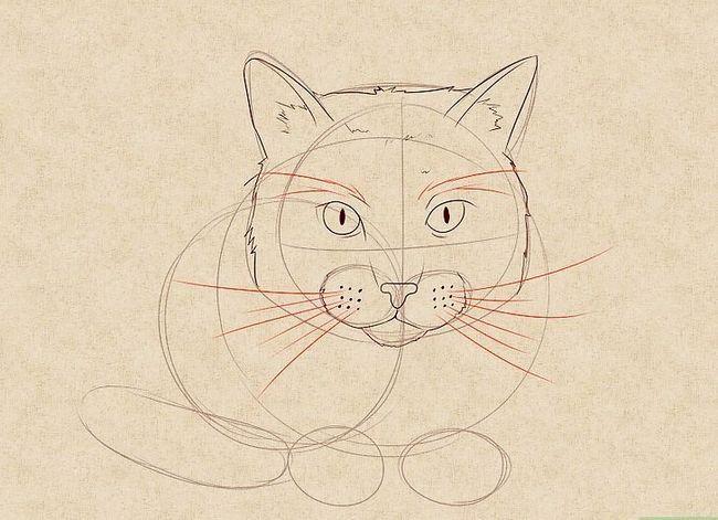 Prent getiteld Teken `n kat Stap 12