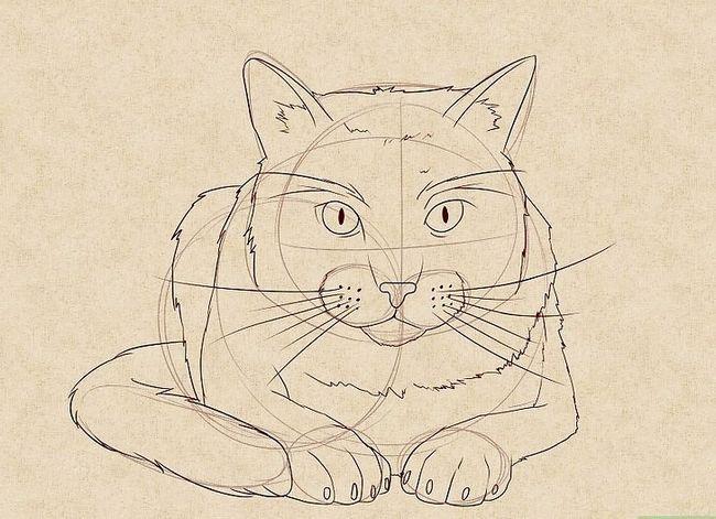 Prent getiteld Teken `n kat Stap 14