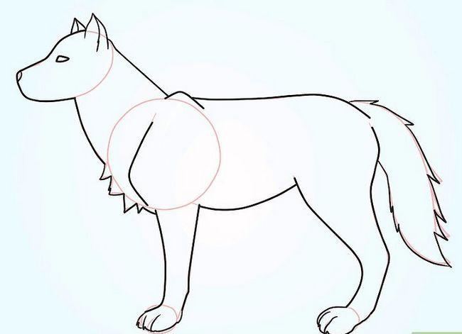 Prent getiteld Teken `n Fluffy Crested Wolf Stap 7