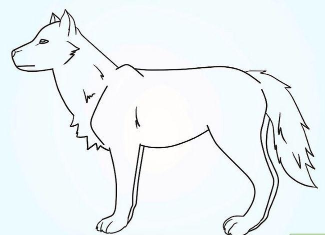 Prent getiteld Teken `n Fluffy Crested Wolf Stap 9