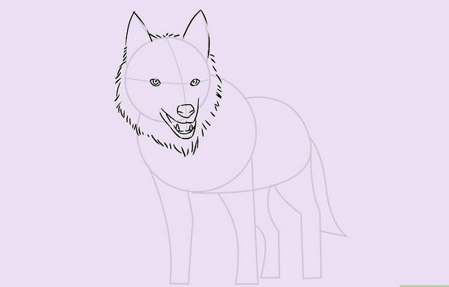 Prent getiteld Teken `n Wolf Stap 15