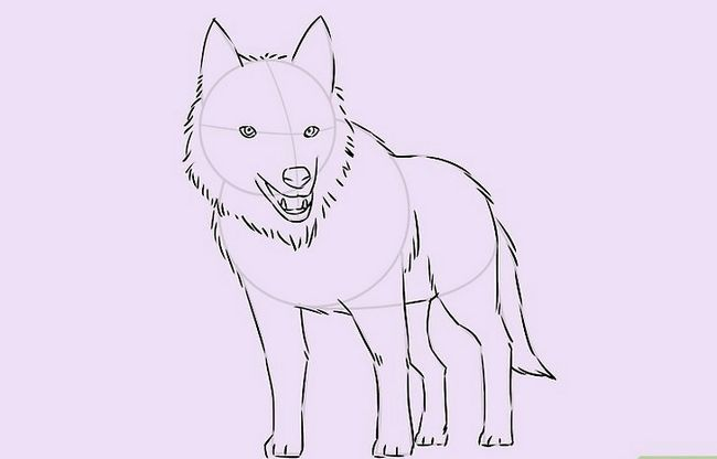 Prent getiteld Teken `n Wolf Stap 16