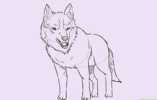 Prent getiteld Teken `n Wolf Stap 17