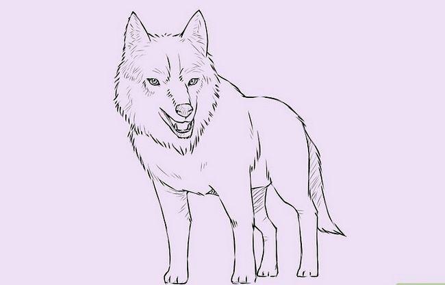 Prent getiteld Teken `n Wolf Stap 18