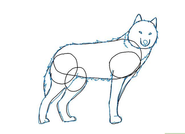 Prent getiteld Teken `n Wolf Stap 6