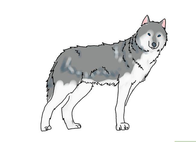 Prent getiteld Teken `n Wolf Stap 8
