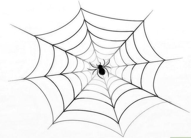 Prent getiteld Teken `n Spinnekop Web Stap 9