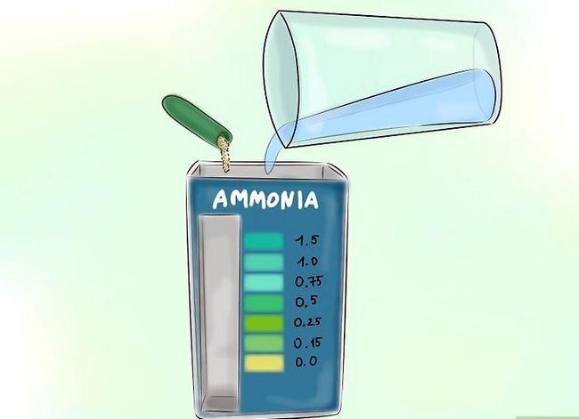 Prent getiteld Laer Ammoniak Vlakke in jou Vistenk Stap 1