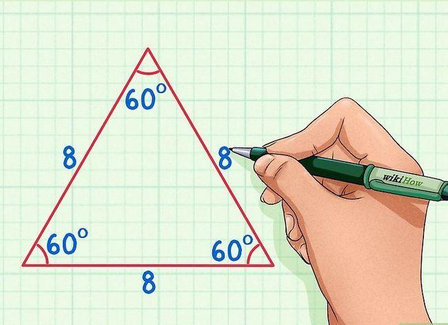 Prent getitel Vind die hoogte van `n driehoek Stap 4