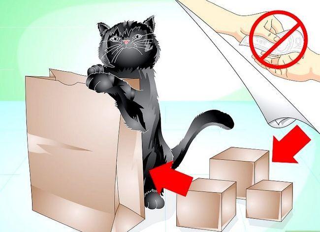 Beeld getiteld Trein jou kat om nie die meubels te krap nie Stap 10