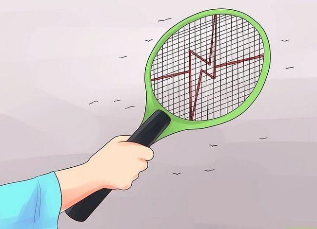 Prent getiteld Beskerm teen Chikungunya Virus Stap 12