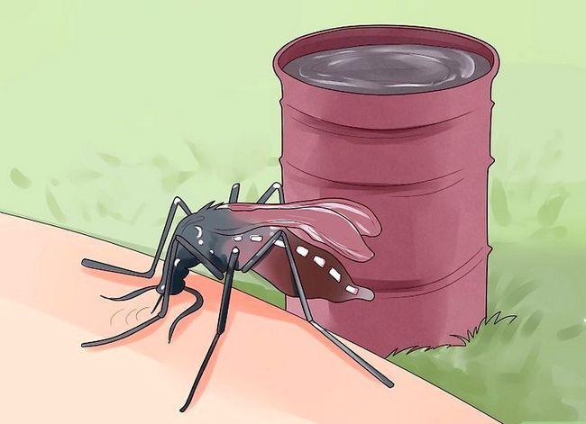 Prent getiteld Beskerm teen Chikungunya Virus Stap 2