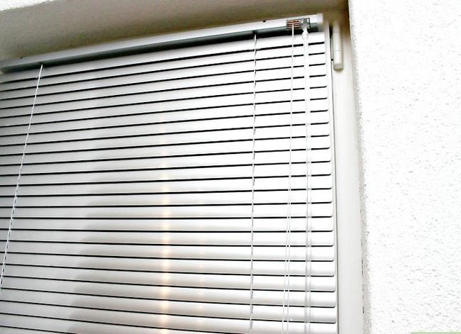 Prent getiteld Verhoed dat voëls van vlieg na Windows Stap 1