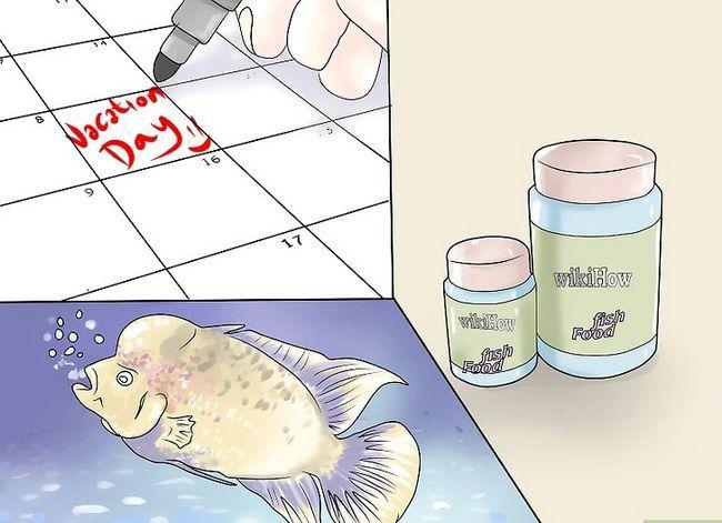 Prent getiteld Hou `n vis van sterf terwyl jy op vakansie is Stap 1