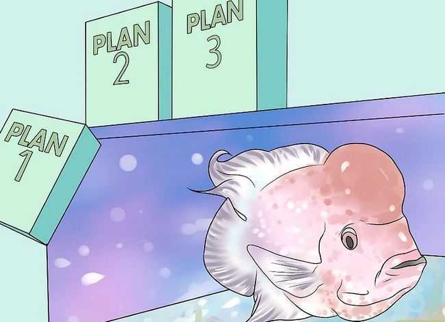 Prent getiteld Hou `n vis van sterf terwyl jy op vakansie is Stap 2