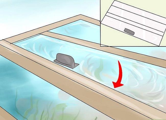 Prent getiteld Hou `n vis van sterf terwyl jy op vakansie is Stap 8