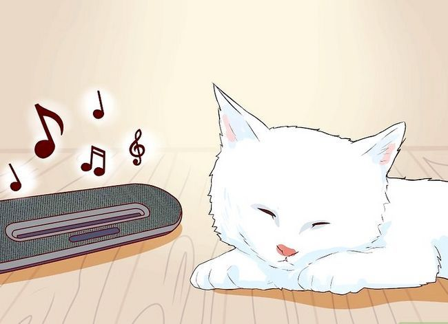 Prent getiteld Sit `n Hyper Kitten in Stap 2