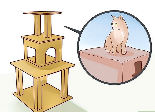 Prent getiteld Sit `n Hyper Kitten in Stap 8